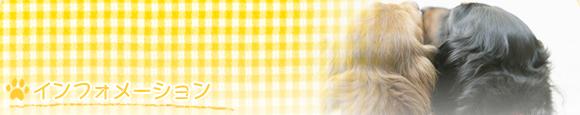 ペットの健康管理 動物病院 東広島市八本松町 犬 猫