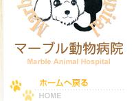 HOME 動物病院 東広島市八本松町 犬 猫