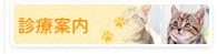 診療案内 動物病院 東広島市八本松町 犬 猫