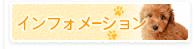 インフォメーション 動物病院 東広島市八本松町 犬 猫
